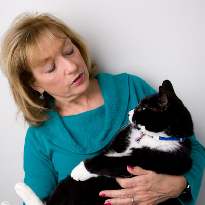 Cancer in your cat – possible options